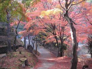 今高野山 (紅葉・桜)_imakouyasan2012-1