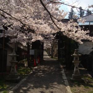 今高野山 (紅葉・桜)_imakouyasan4